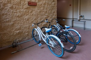 One Bedroom Apartments for Rent in Houston, TX - Bike Rentals
