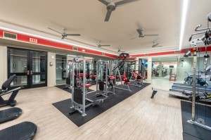 One Bedroom Apartments for Rent in Houston, TX - Fitness Center