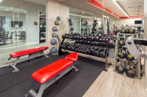 One Bedroom Apartments for Rent in Houston, TX - Fitness Center (3)