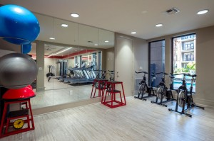 One Bedroom Apartments for Rent in Houston, TX - Fitness Center (4)