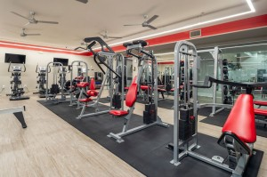 One Bedroom Apartments for Rent in Houston, TX - Fitness Center (5)