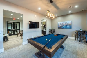 One Bedroom Apartments for Rent in Houston, TX - Pool Table