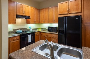 One Bedroom Apartments in Houston, Texas - Model Kitchen