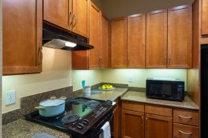 One Bedroom Apartments in Houston, Texas - Model Kitchen (2)