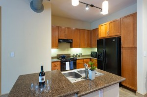 One Bedroom Apartments in Houston, Texas - Model Kitchen (3)