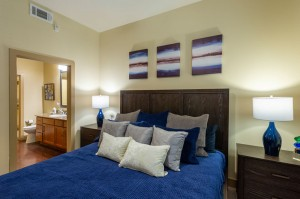 Two Bedroom Apartments for Rent in Houston, TX - Model Bedroom with Bathroom View (2)