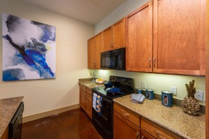 Two Bedroom Apartments for Rent in Houston, TX - Model Kitchen