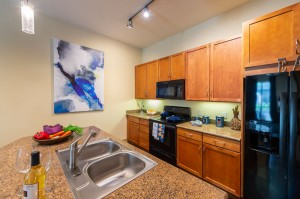 Two Bedroom Apartments for Rent in Houston, TX - Model Kitchen with Breakfast Bar