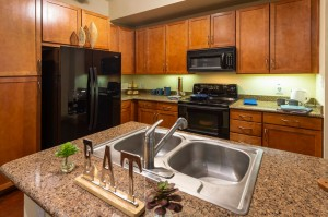 Two Bedroom Apartments for Rent in Houston, TX - Model Kitchen with Double Sink Island (2)
